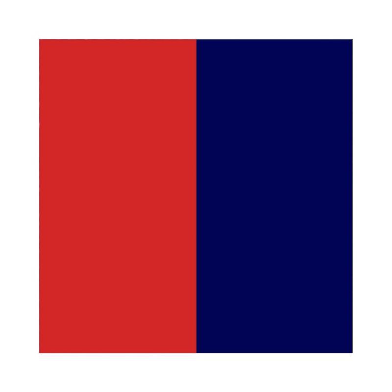 Vinyle de bague reversible les Georgettes bleu/framboise