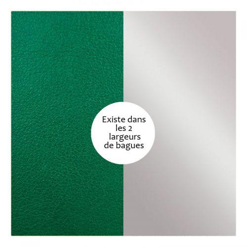 Vinyle de bague reversible les Georgettes vert bouteille/gris vernis