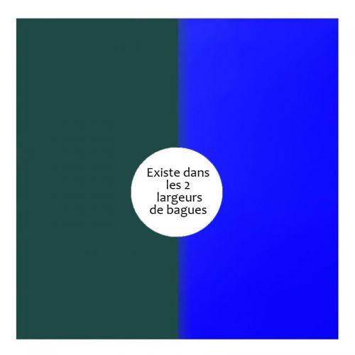 Vinyle de bague reversible les Georgettes sapin/bleu outremer